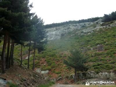 Carro del Diablo - Valle del Lozoya; pinsapar puente de diciembre dias viajes fin de semana